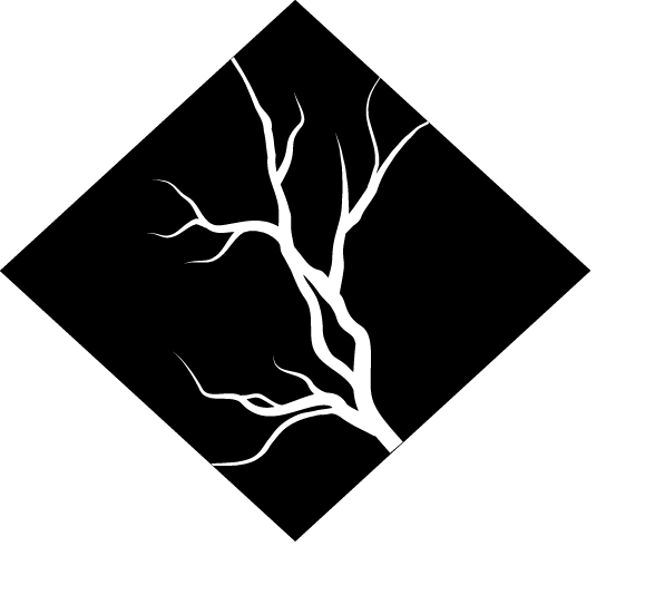 Logo NEWI